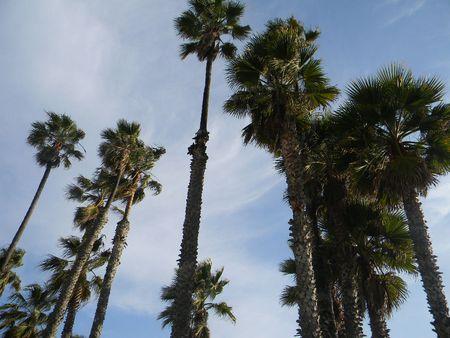 Ruca, LA, life 106