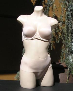 Spanx-bra-shaper-thong