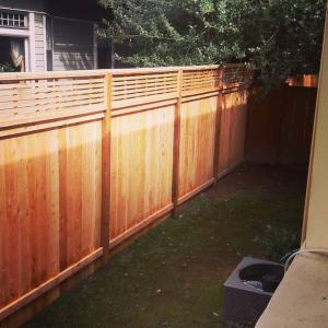 Fence blog 2