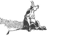 Ferdinand-flower-smelling