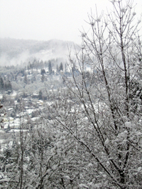 Snowday_view1